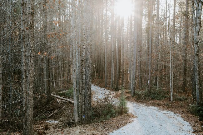 Wind River Dweller Interview- Johnston, Virginia